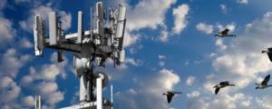 Nieuwe Monitor Draadloze Technologie
