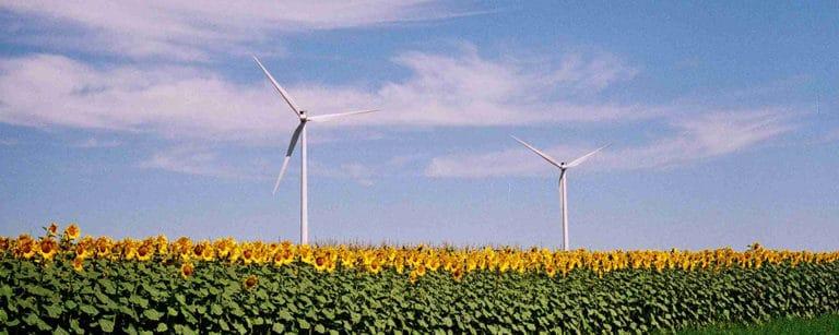 Ruim 80 procent van de kantorenmarkt beschikt nog niet over energielabel C of hoger